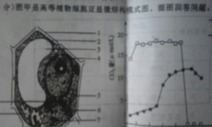 图甲是高等植物细胞亚显微镜结构模式图图片