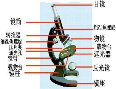 螺旋夹怎么用图解