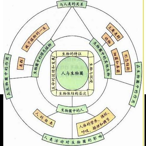 初中生物课知识结构的核心是( )