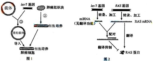 该基因工程技术基本流程如图1