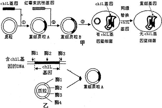 电路 电路图 电子 工程图 平面图 原理图 555_369