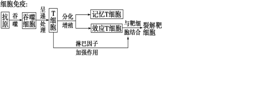 电路 电路图 电子 设计