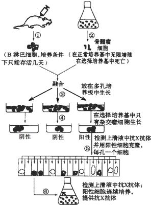 电路 电路图 电子 设计 素材 原理图 296_401 竖版 竖屏