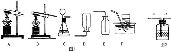 ;y原子的原子结构示意图