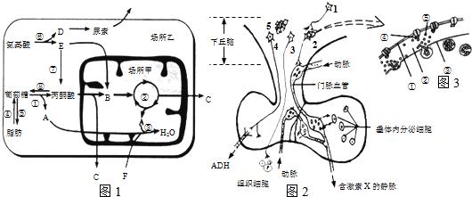电路 电路图 电子 原理图 530_221