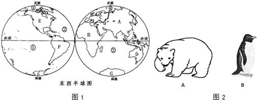 海南岛地形图全貌图我看看