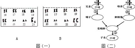 电路 电路图 电子 原理图 475_169