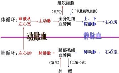 氮气原子结构示意图