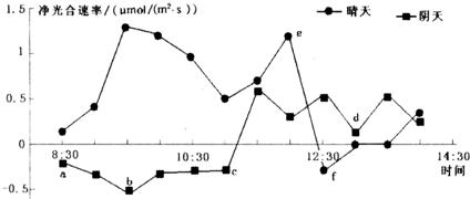 绿萝属于半阴生蔓藤植物,喜湿润环境.科研人员在不同条件下测定发育良好的绿萝叶片净光合速率变化情况,结果如图所示,下列叙述正确的是