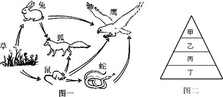 蚯蚓机后级电路图