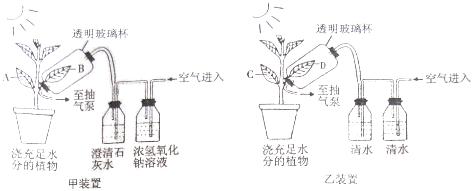 下列图示装置是用来研究光合作用所需的某种原材料的