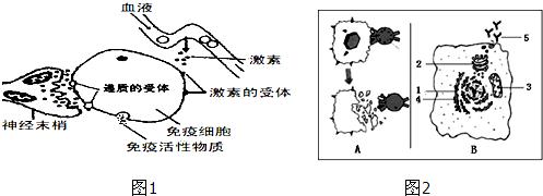 2013-2014上表四川省遂宁市射洪高二高中(学年示中学集合图片
