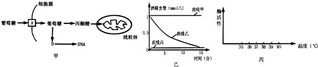如图甲是高等动物肝细胞糖代谢过程的示意图