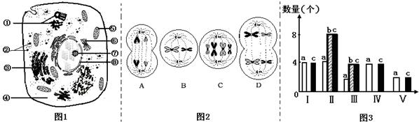 如图1是高等动物细胞亚显微结构模式图