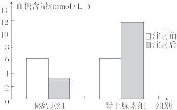 某家兔科研选修了胰岛素及肾上腺素对生物血糖小组高中开展3框图图片