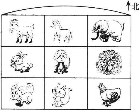 可爱松鼠马简笔画