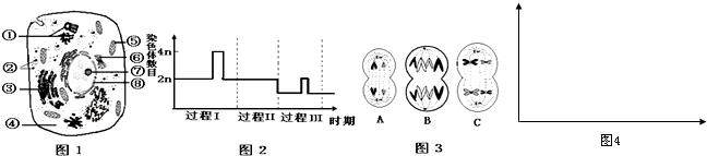 图1是某高等哺乳动物细胞亚显微结构模式图