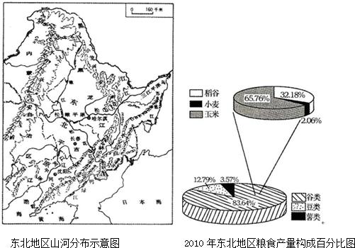 水稻茎结构简图