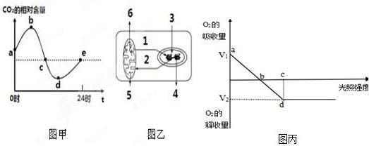 【解答】解:由图可,b和d点,大棚中氧化含达最大值和小值此时光合作用强度呼吸作用强度相等在点时光合作用于呼吸作,超过d点,吸作用增,将消耗机,所以点积累机物最多. c点时植物的净光合作用为V2所以氧气的产量为V2+V1(、1都表示值D误. 丙图中a点只有呼吸作用,所以为乙的5、6过程c点时合用大于呼吸作用,的二氧碳来自大气和线粒,氧气被线用后多余的部分释放到大气所为1、、3、. b点物光合作用与作用相等,B错误; 由图可知一夜二化相对含量下降所以有机物含量增加. 温度25高3光合作用下降,呼吸作用增加,
