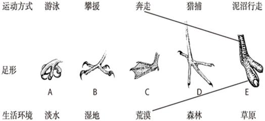 电路 电路图 电子 设计图 原理图 524_240