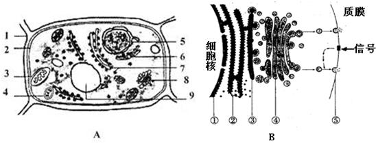 a图为某植物细胞的亚显微结构模式图