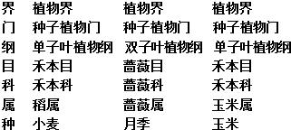 15初中苏教版八生物(上)期末试卷年级-初中生学年v初中南宁图片