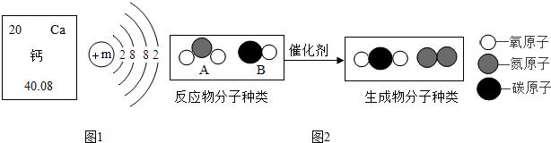 【解答】解:(1)由钙元素在元素周期表中的相关信息,可知钙元素的相对原子质量是40.08;故填:40.08; (2)由钙元素的原子结构示意图,则可知:最外层电子数为2,钙原子在化学反应中易失电子;故填:失去; (3)根据原子序数=核内质子数=核外电子数=核电荷数,故钙原子的结构示意图中,2+m+8+2=20,m=8;故填:8; (4)由图中信息可知,反应的微观示意图表示2个A分子与4个B分子反应,通过原子的重新结合,形成了4个化合物分子和1个单质分子分子,根据质量守恒定律,化学反应前后原子的种类不变,参