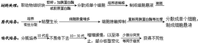【解答】解:题图知A是蛋白质a是氨酸,组成蛋白质的基酸至少含有一基和一个羧基在同碳原子上根据R基不同,组成蛋质的氨基分20种,基酸的结构通式是: 脲试 绿 岛素属分泌蛋白分蛋白先在核糖体上通脱水缩合反应成肽链,链依次进入内网、高尔体进行加工、分类和包装,并胞膜泌胞外,该程需的能力主要线粒体提供,因此与胰岛素合成关的细胞是核体、内网、尔基体、线体. 故案为: 遗传信/空格空格/ 脱氧核酸/空/ 空格/4空格/ /空/格/ DA中氧核苷酸的排顺序代表遗传信息多物体储存遗传信息的物质;b是脱氧核苷酸,根碱基同分