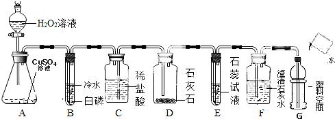 使管口罩住白磷(如装置丙所示)