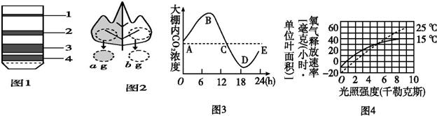 电路 电路图 电子 原理图 624_167