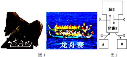 2014-2015学年江西省抚州市金溪二中九年级(成都重点初中升学率图片