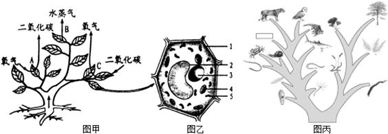 2014-2015年级江西省抚州市金溪二中九膳食(合理学年初中生图片