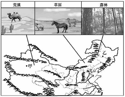 北部地区自然景观东西差异明显.据图写出我国北部地区植被景观自东